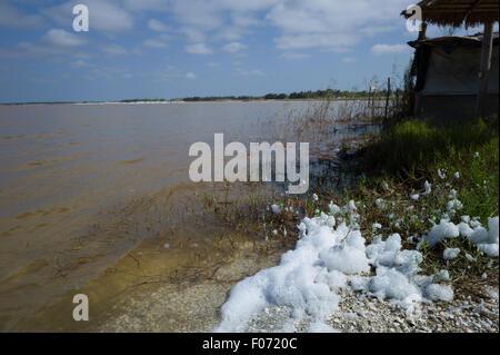 Retba lake, salted lake, named lac rose for colour of plants inside,Senegal - Stock Photo