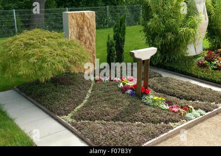 Grabbepflanzung, gruener, Faecherahorn, Fiederpolster - Stock Photo
