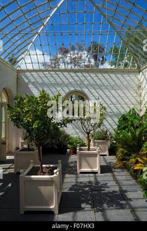 The Orangery in Fota House, Arboretum & Gardens, Near Cobh, County Cork, Ireland - Stock Photo