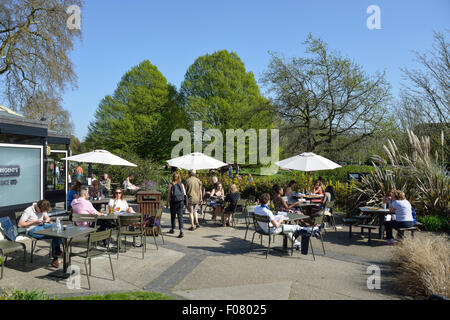 Terrace at The Regent's Bar & Kitchen, Regent's Park, London Borough of Camden, London, England, United Kingdom - Stock Photo