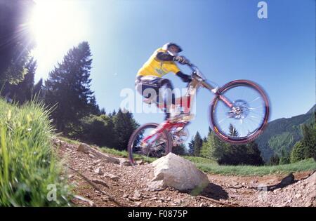 Mountain biker riding bike, Black Forest, Baden-Wurttemberg, Germany - Stock Photo
