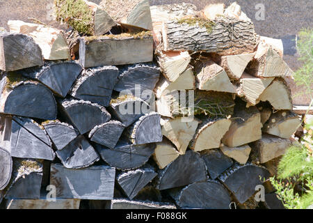 Stack of firewood piled high for winter in garden on French property - Stock Photo
