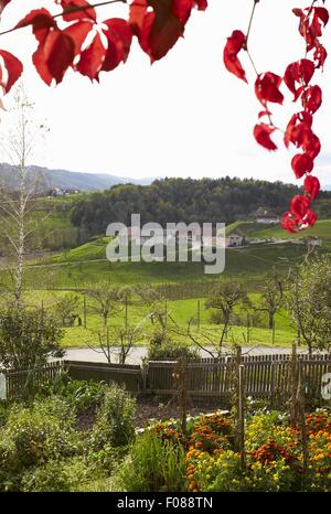 View of landscape from tavern in Styria, Austria - Stock Photo
