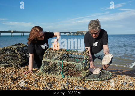 Deal, Kent, UK, Sunday 9th August 2015. Kate Davis and David Moore on Deal beach putting 'Cabbo' masks into lobster - Stock Photo