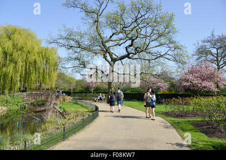 Queen Mary's Gardens, Regent's Park, London Borough of Camden, London, England, United Kingdom - Stock Photo