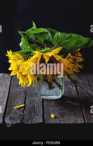 Bouquet of sunflowers in glass jar over old wooden table. Dark rustic style. Natural day light. - Stock Photo