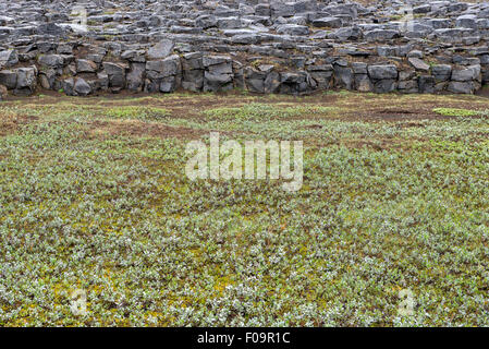 Landscape near Hafragilsfoss Waterfall, Iceland - Stock Photo