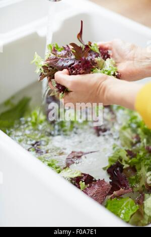 Woman washing vegetable in kitchen sink - Stock Photo