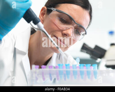 Scientist pipetting DNA sample into vial in lab - Stock Photo