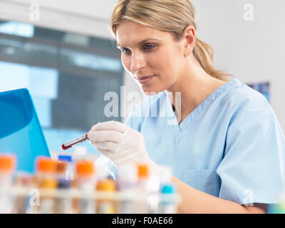 Medical researcher viewing data on a computer for a blood sample during testing - Stock Photo