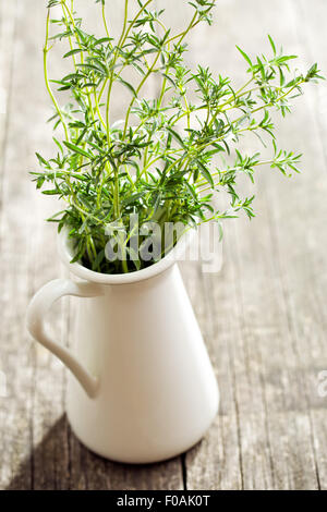 Fresh savory bunch in vase - Stock Photo