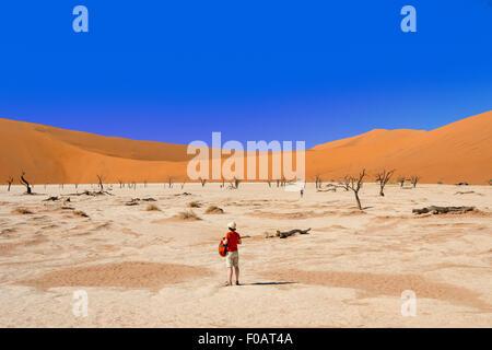 The Dead Viei (DeadVlei) Pan, Namib-Naukluft National Park, Sossusviei, Namib Desert, Hardap Region, Republic of - Stock Photo