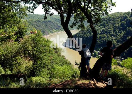 Blick von der  Loreley, Rhein; - Stock Photo