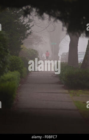 Early morning in fog with sidewalk and green shrubs and trees with person excersing by running and walking in their - Stock Photo