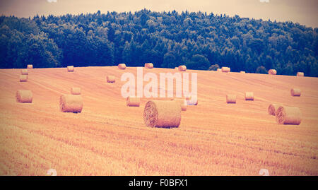 Vintage toned hay bales on harvested field, shallow depth of field. - Stock Photo