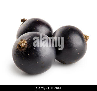 Three berries of black currant isolated on a white background - Stock Photo