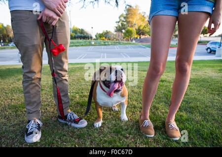 Portrait of bulldog in park between legs of young couple - Stock Photo