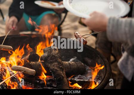 Group of friends having barbecue on beach - Stock Photo