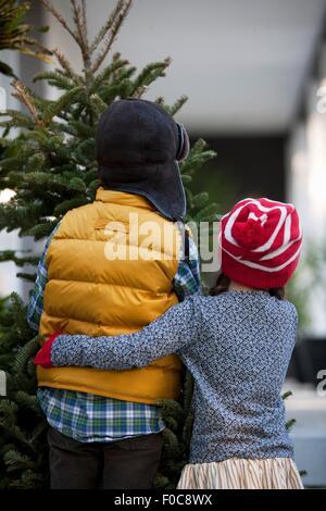 Girl and boy carrying christmas tree - Stock Photo