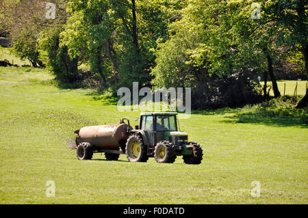 Farmer drives tractor in field speading manure - Stock Photo