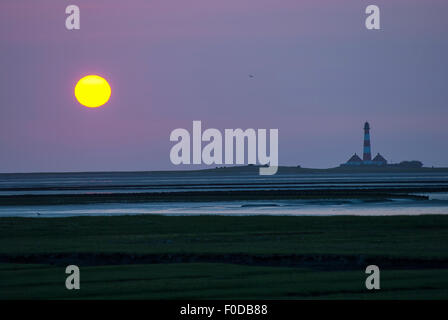 Westerhever lighthouse at sunset, Westerheversand, Tümlauer Bay behind, Tümlauer-Koog, seagull in the sky, Schleswig - Stock Photo
