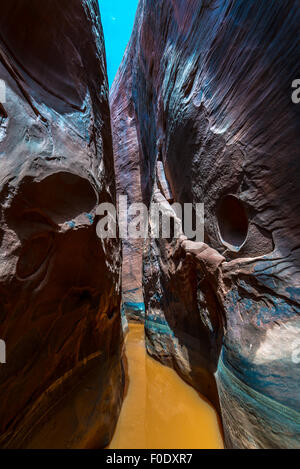 Water in the slow Canyon Vertical Composition Utah - Stock Photo
