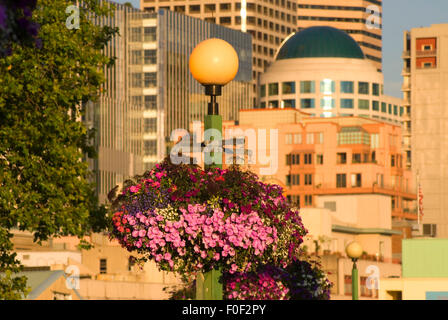 Planter, Victor Steinbrueck Park, Seattle, Washington - Stock Photo