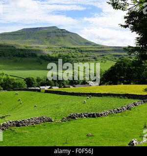 The challenge of Ingleborough seen from near Chapel-le-Dale, Yorkshire Dales National Park, England - Stock Photo