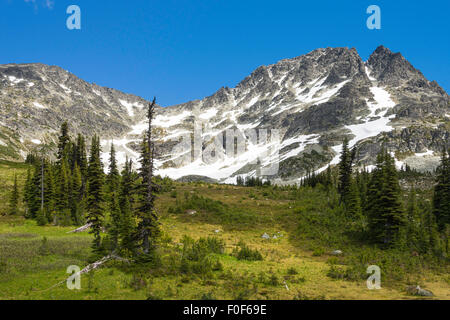 Alpine meadow and peak of Blackcomb Mountain seen from the Overlord Trail, Blackcomb Mountain, Whistler, BC, Canada - Stock Photo