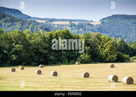 Bales of Hay near Konigstein fortress,  Saxonian Swiss, Saxony, Germany, Europe - Stock Photo