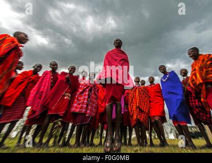 Traditional jumping dance Maasai people Mara Naboisho conservancy Kenya Africa - Stock Photo