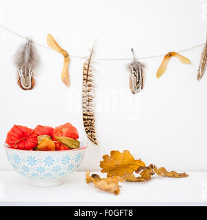 a bowl of chinese lanterns on a white shelf, oak leaves and a feather garland - Stock Photo
