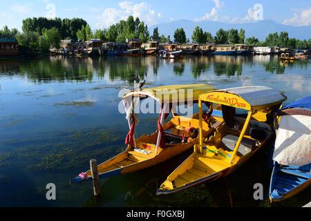 Dal lake and shikara Boats in Beautiful Kashmir Valley at Srinagar Jammu and Kashmir India - Stock Photo