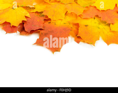 Autumn background of colored leafs border isolated - Stock Photo