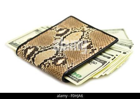 Money in snake leather purse isolated on white background - Stock Photo