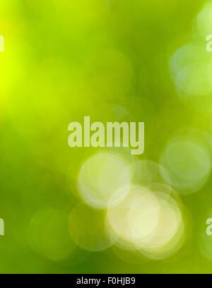 natural green light blur background - Stock Photo