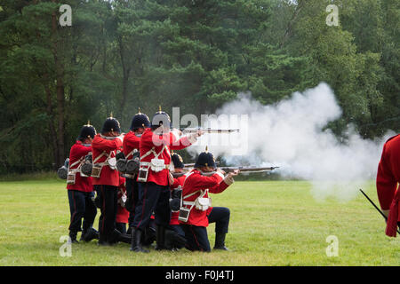 1715 Queens regiment English Soldiers from the Jacobite era putting on a display at Cannock Chase Visitor Centre - Stock Photo