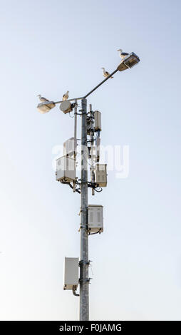 A cell phone tower against clear blue sky. - Stock Photo