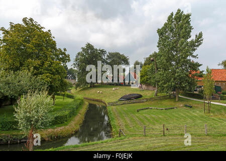 Traditional cottages in green pastures in the Buitenmuseum of the Zuiderzeemuseum, Enkhuizen, North Holland, The - Stock Photo