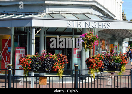 Row of colourful hanging baskets and window boxes outside a shop in Lytham, Lancashire - Stock Photo