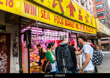 Fish market canal street chinatown new york city usa for Fishing store nyc