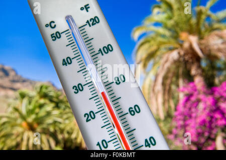 Vacation Trekking Heat Thermometer displays a hot holiday temperature of 25 degrees Centigrade against palm trees - Stock Photo
