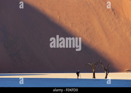 Namibia, Namib Naukluft, Namib Desert, man photographing dead acacias on clay pan - Stock Photo