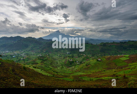 Virunga Mountains, Uganda, Africa - Stock Photo