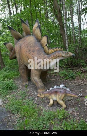 Stegosaurus was a large extinct Jurassic herbivore Dinosaurier Park Germany - Stock Photo