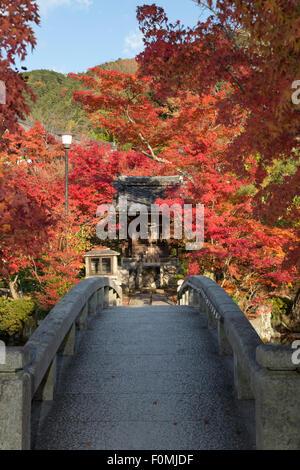 Bridge over the pond in autumn, Eikan-do Temple (Buddhist Temple), Northern Higashiyama, Kyoto, Japan, Asia - Stock Photo