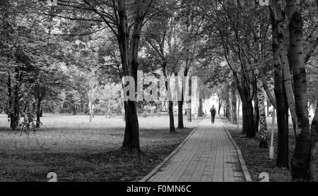Single lone man walks down a deserted forest stone path amongst the shadows of overhead trees - Stock Photo