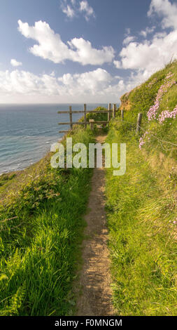 The Beautiful South West Coast Path. Taken at Millook Haven in North Cornwall, England, UK. - Stock Photo