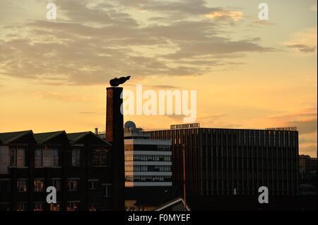 Glasgow, Scotland, UK. 18th August, 2015. Glasgow City College's new riverside campus adds to the Glasgow skyline - Stock Photo