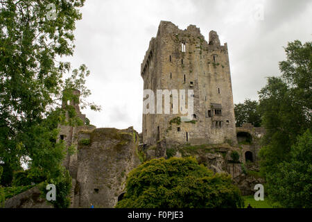 This is the Blarney castle in Cork, Ireland. - Stock Photo